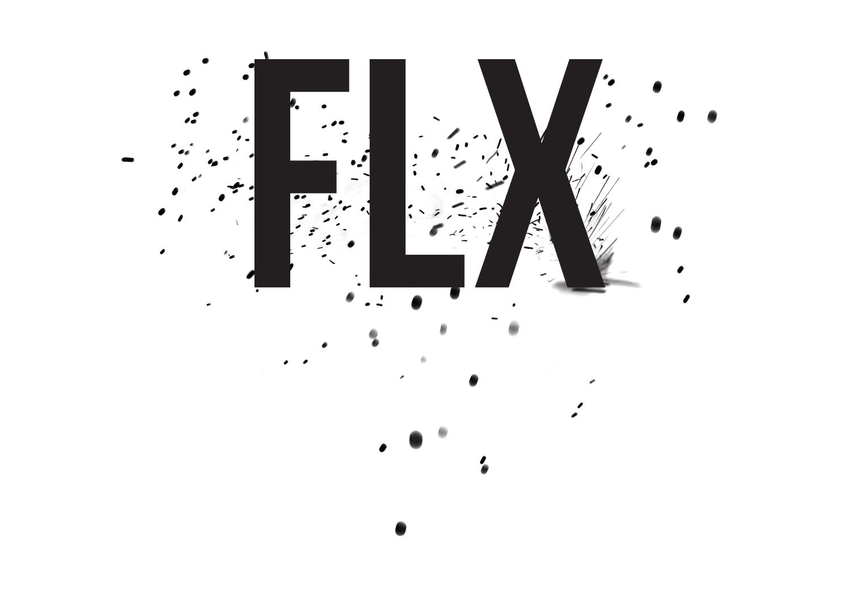 Logoflx ok 2